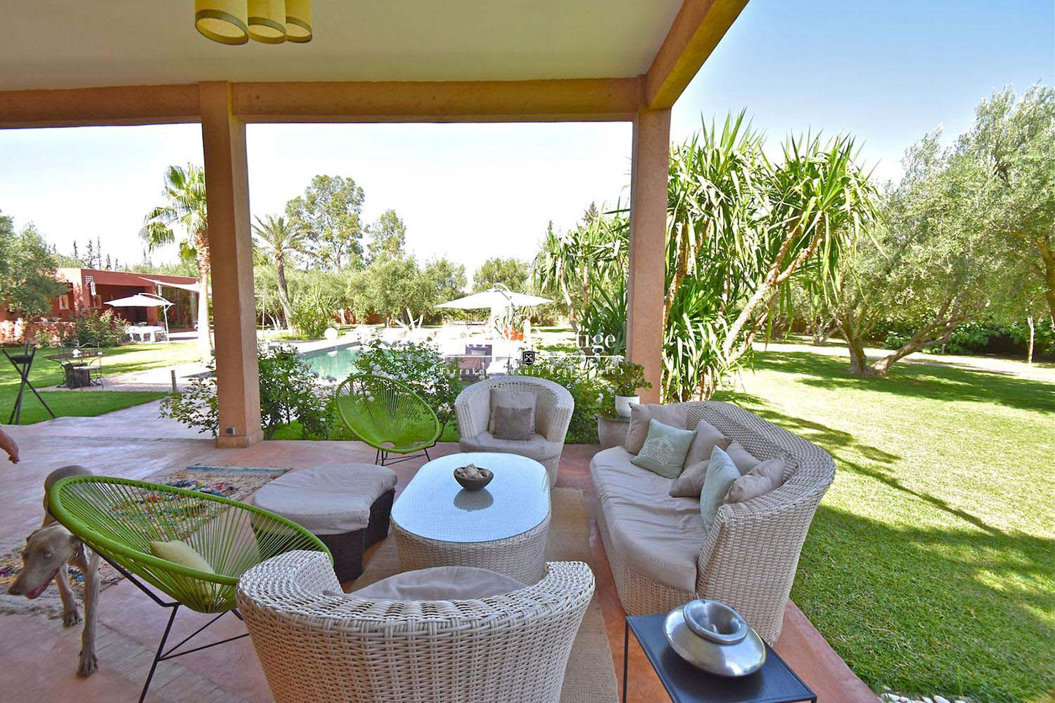 Propriete en vente a Marrakech